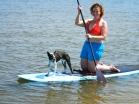 Ferdie gets into paddleboarding