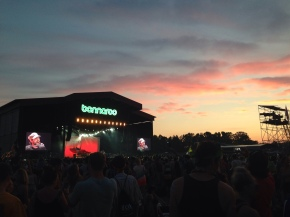 A Beer Lover's Guide to Bonnaroo