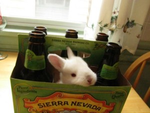 This beer has a lot of hops... Photo by silverbeat via Reddit.